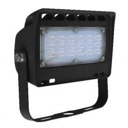 Projecteur LEDS haut de gamme - 30W