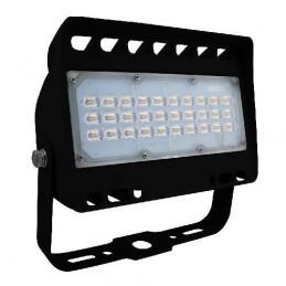 Projecteur LEDS haut de gamme - 50W